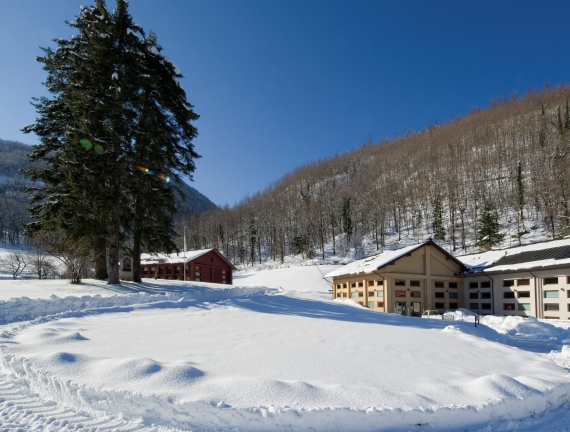 Dynamo Camp inverno