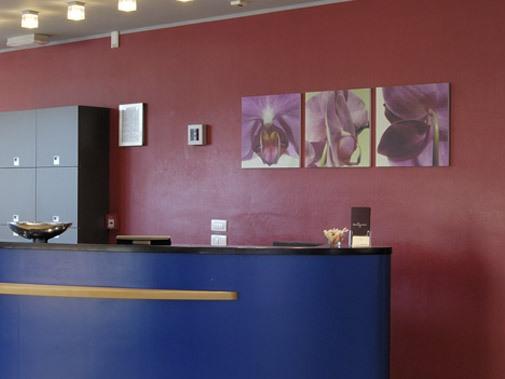 Hotel Executive Forlì - Emilia Romagna