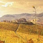 Il Boscareto Resort & SPA - Langhe