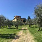 Villa di Maiano - Tuscany - Italy