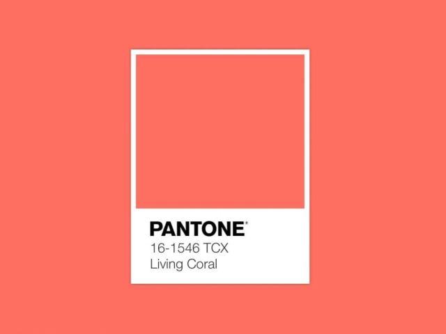 Living Coral Pantone 2019